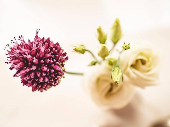 Ayurveda-Klinik-Blumendekoration